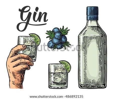 glass and bottle of gin and