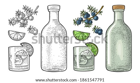Glass, bottle gin and branch of juniper with berries. Vintage vector color engraving illustration for label, poster, web. Isolated on white background Foto stock ©