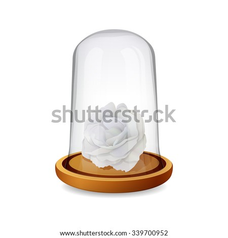 glass dome with white rose
