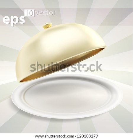 Glossy ceramic salver dish with an empty copyspace food cover over it, eps10 vector composition illustration