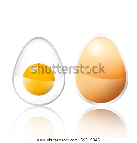 glossy vector eggs