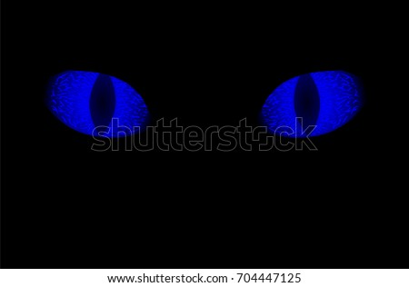 glowing blue eyes of animal on