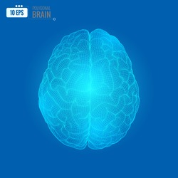 Glowing digital 3D wireframe brain illustration in top view isolated on blue background