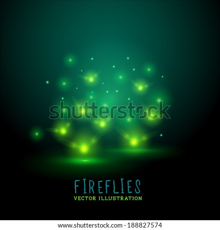 glowing fireflies a group of