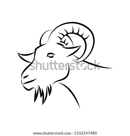 goat head vector line art sketch style