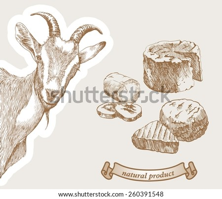 Goat peeking from the corner and natural products which produced from goats milk