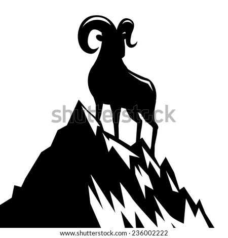 goat standing on mountain
