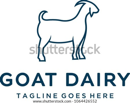 Goat that looks fat produces high quality dairy milk.