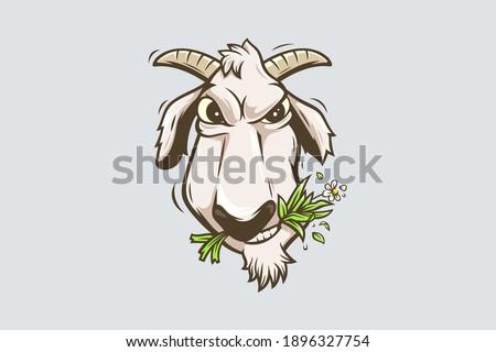 goats cartoon character chewing grass Foto stock ©