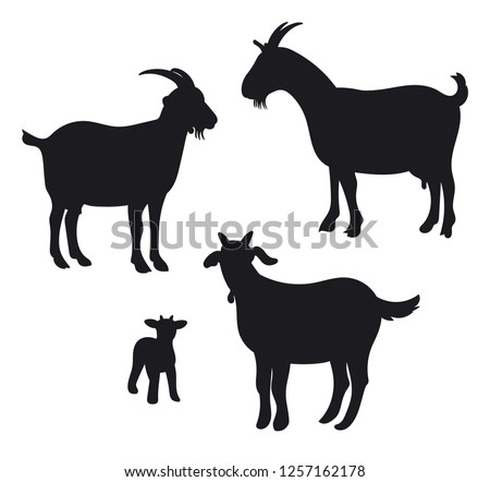Goats isolated on white, hand drawn vector illustration.