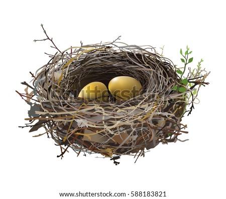 gold eggs in bird's nest hand
