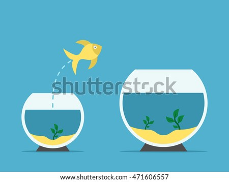 gold fish jumping from little