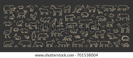 Gold line banner for american, african and australian animals. Linear concept for pets and farm animals. Open path.