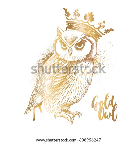 gold owl in a crown vector