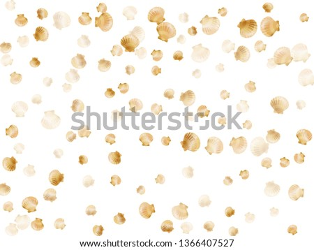 Gold seashells vector, golden pearl bivalved mollusks. Sea scallop, bivalve pearl shell, marine mollusk isolated on white wild life nature background. Trendy gold sea shell vector.