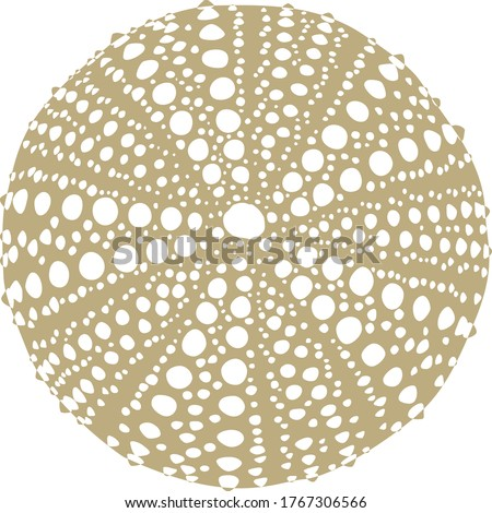 Gold Silluette Sea Urchin Vector Stockfoto ©