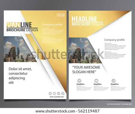 Golden abstract annual report Brochure design template vector. Business Flyers infographic magazine poster.Abstract layout template ,Book Cover presentation portfolio.