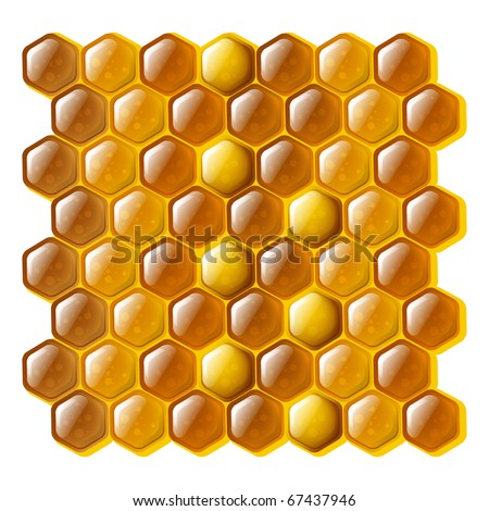 Golden and shiny cells of a honeycomb