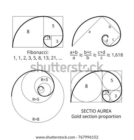 golden fibonacci ratio spirals