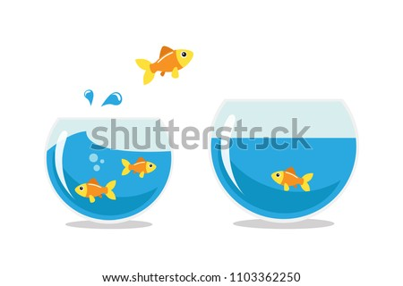 Golden fish jumping to other fishbowl. Isolated vector illustration. stock photo