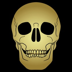 Golden human skull on black background. Isolated vector illustration.