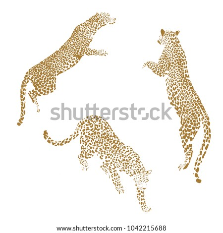 golden leopard vector