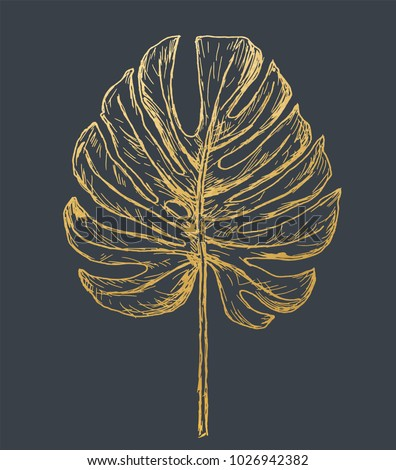 Golden Philodendron Leave. Hand Drawn.