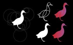 golden ratio logo. Duck Logo Template Made With Golden Ratio Principles.