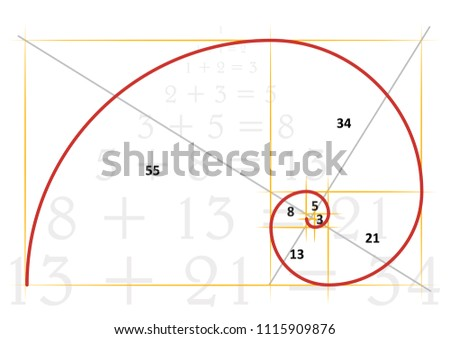 Golden ratio tattoo template vector eps illustration Golden proportion Golden section Divine proportion Fibonacci Leonardo spiral symbol Gometric shapes Circles in golden proportion Rectangle  funny