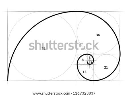 Golden ratio tattoo template vector eps illustration Golden proportion Golden section Divine proportion Fibonacci Leonardo spiral symbol Gometric shapes Circles in golden proportion Rectangle funny