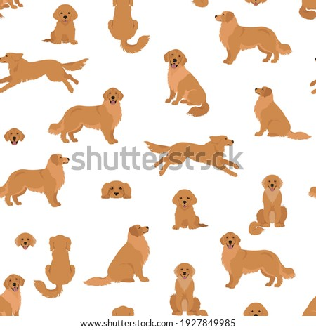 Golden retriever dogs in different poses and coat colors. Seamless pattern. Adult goldies and puppy set.  Vector illustration Photo stock ©