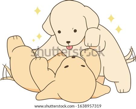 golden retriever - puppy playing with good friend Stok fotoğraf ©