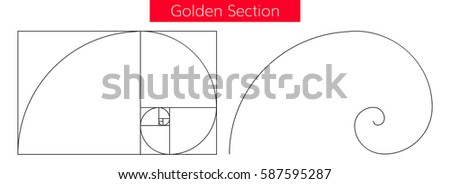 golden section vector