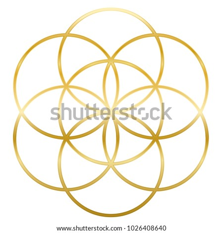 golden seed of life precursor