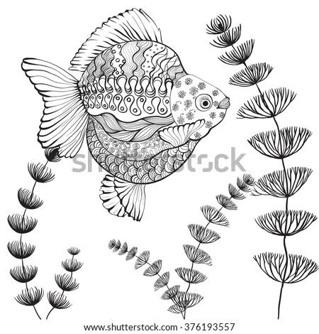 goldfish algae background