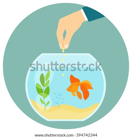goldfish in aquarium isolated