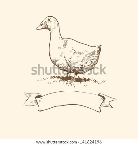 Goose hand drawn. Vector illustration