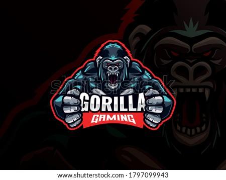 Gorilla mascot esport logo design. Gorilla animal mascot vector illustration logo. Wild angry gorilla mascot, Emblem design for esports team. Vector illustration