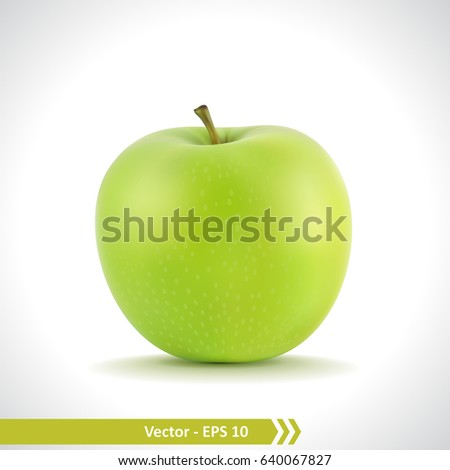 Gradient Mesh Vector Illustration of a Photo Realistic Green Apple