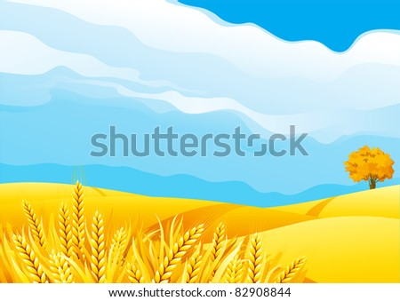 Grain fields Fall landscape of yellow Grain fields with Wheat