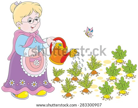 grandmother watering carrots