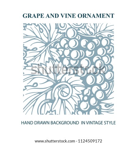 Grape and vine ornament and background.  Hand drawn grape and vine engraving style illustration.  Bunch of grapes vector design element.  Wine theme grape and vine vintage style design.