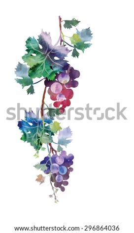 grape garland  eps 8