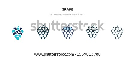 grape icon in different style