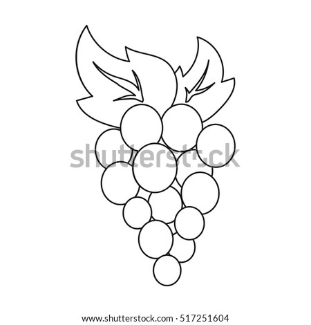 grapes icon in outline style