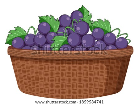 grapes in the basket isolated