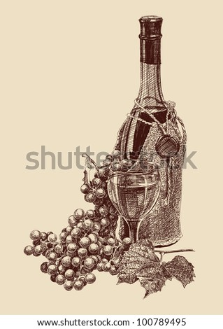grapes with a bottle of wine drawing vector illustration