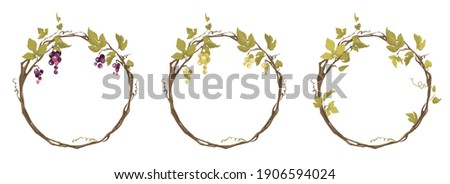 Grapevine - vector illustration. Design elements with a twisting vine with leaves and berries. Freehand drawing in watercolor style. Round frame with vine.