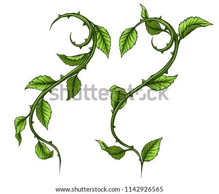 graphic cartoon detailed green