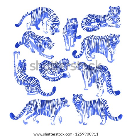 Stock Photo Graphic collection of tigers in different poses. Vector exotic design elements isolated on white background